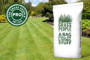 All Rounder Grass Seed