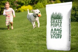 FAMILY: Kids and Pets Grass Seed