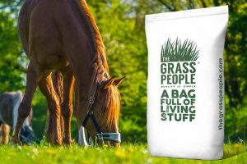 NURTURE: Paddock with Herbs