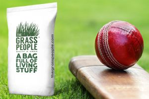 PERFORM: Cricket Outfield Seed
