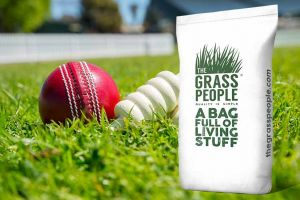 PERFORM: Cricket Squares & Wickets
