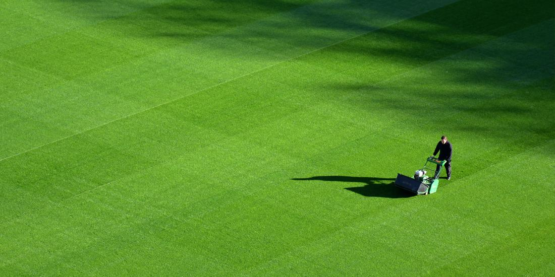 Groundsmen Grass Seed Guide