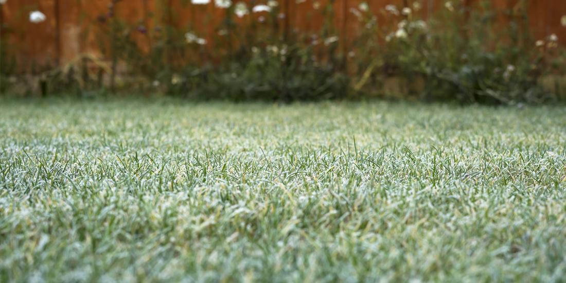 3 tips to wind down your lawn for winter