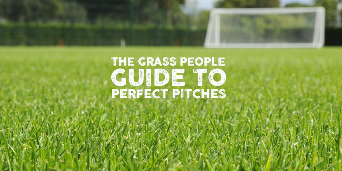 How to manage your sports pitch
