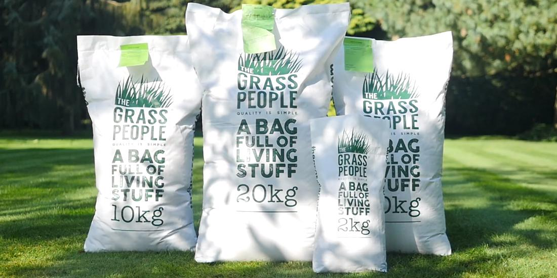 What grass seed do I need?
