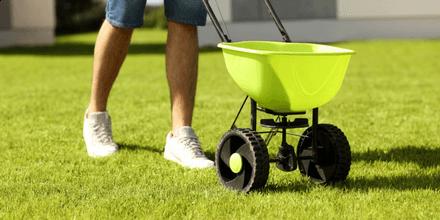 How to fertilise your garden in summer