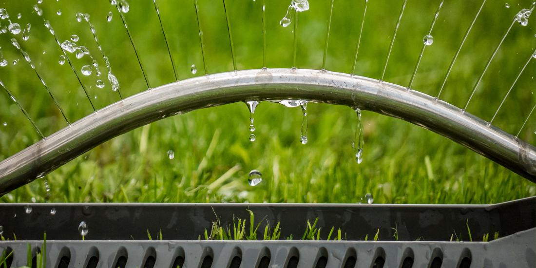 How often should I water my lawn in summer?