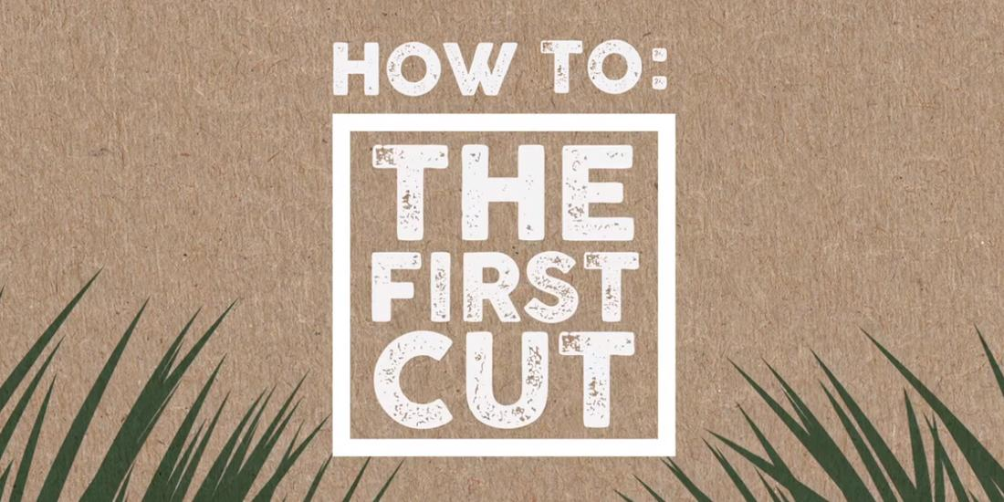 How to: The first cut