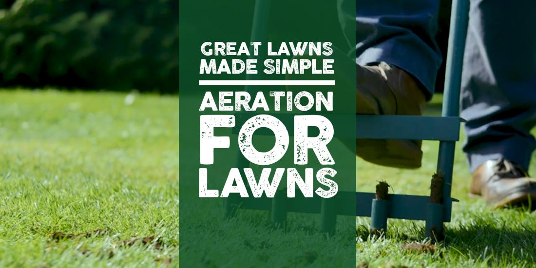 Great Lawns Made Simple: Aeration for lawns
