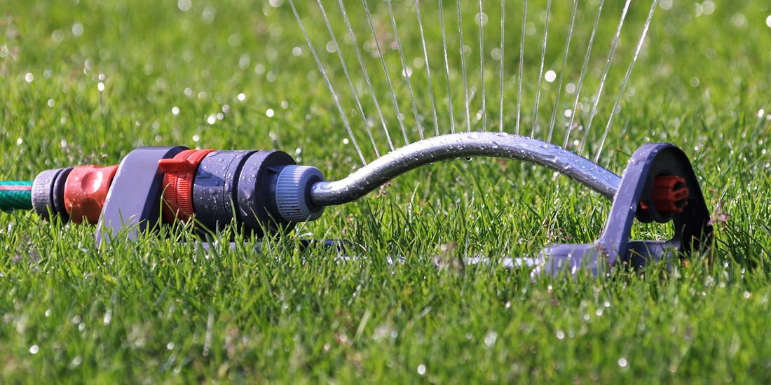 How to repair a drought damaged lawn
