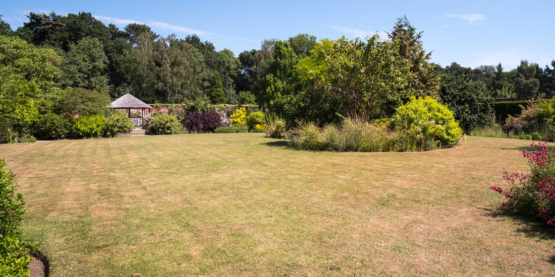 Midsummer management for your lawn