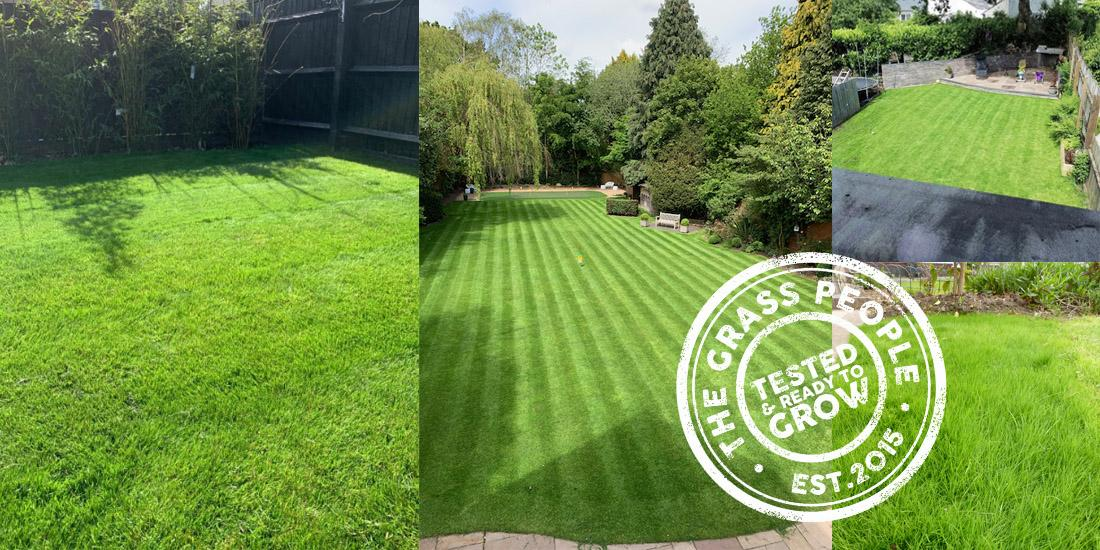 The best lawns of summer 2019!