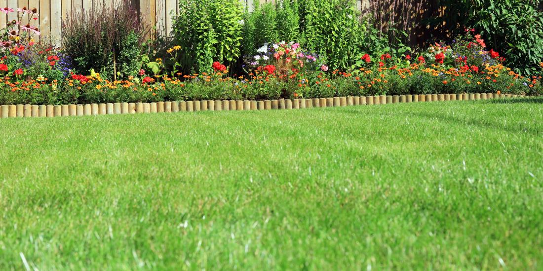 Can I still sow grass seed in August?