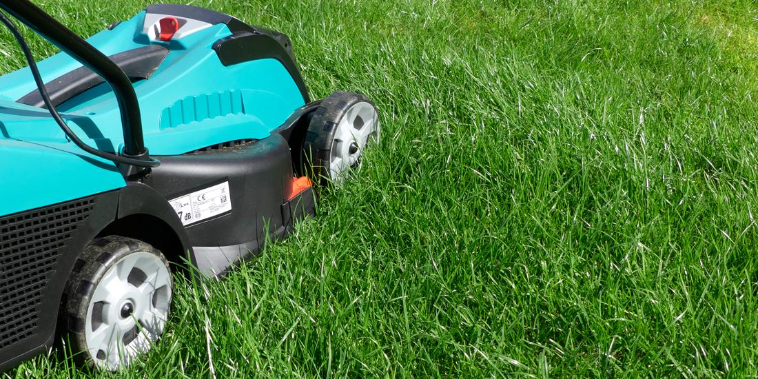 How to mow a new lawn for the first time
