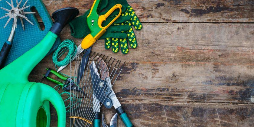 Sowing season survival kit