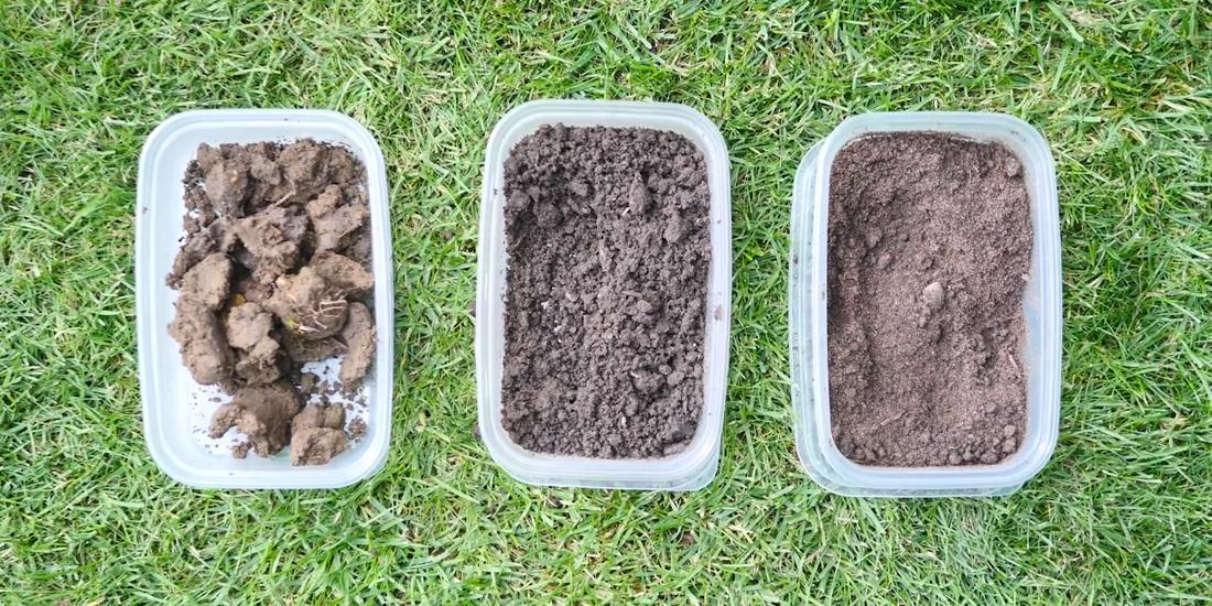 Grass seed for different soil types