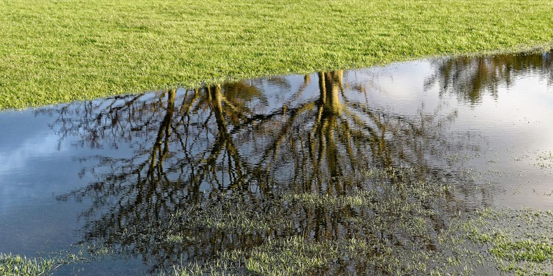 How to flood-proof your lawn