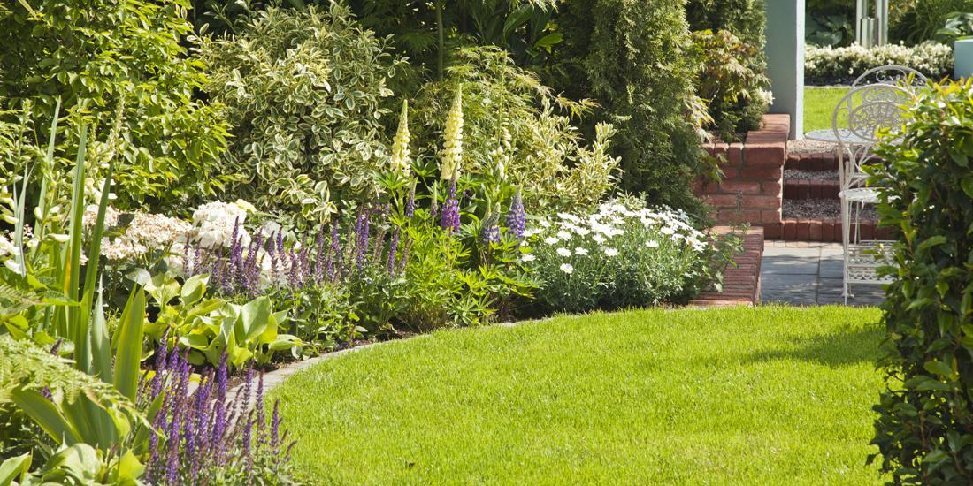 New Year, New Lawn: Your New Year lawn resolutions!