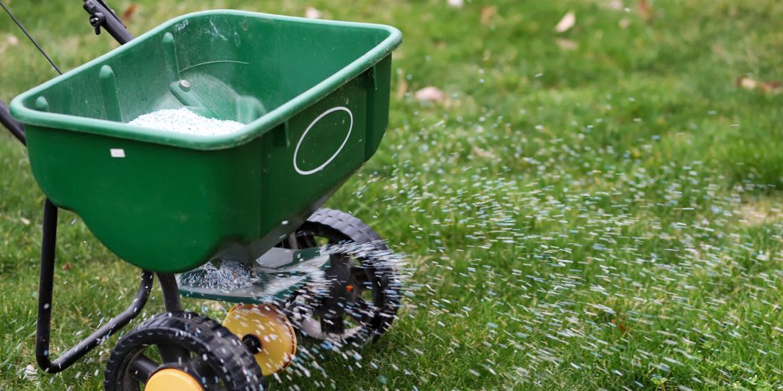 Do I need to apply fertiliser to my lawn?