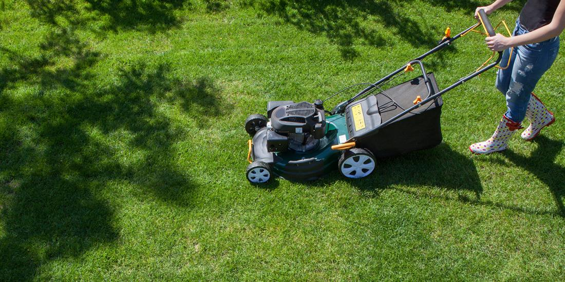 Mowing and grass cutting