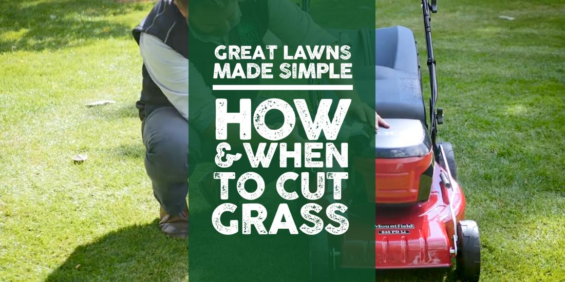 Great Lawns Made Simple: How and when to cut grass