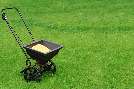 What is lawn fertiliser?