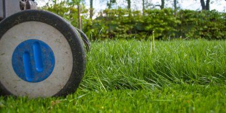 The last grass cut of the season