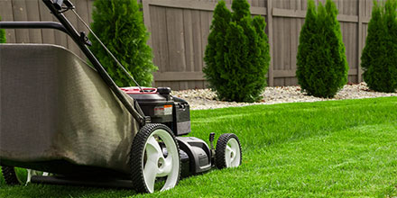How To: Mow a New Lawn for the First Time