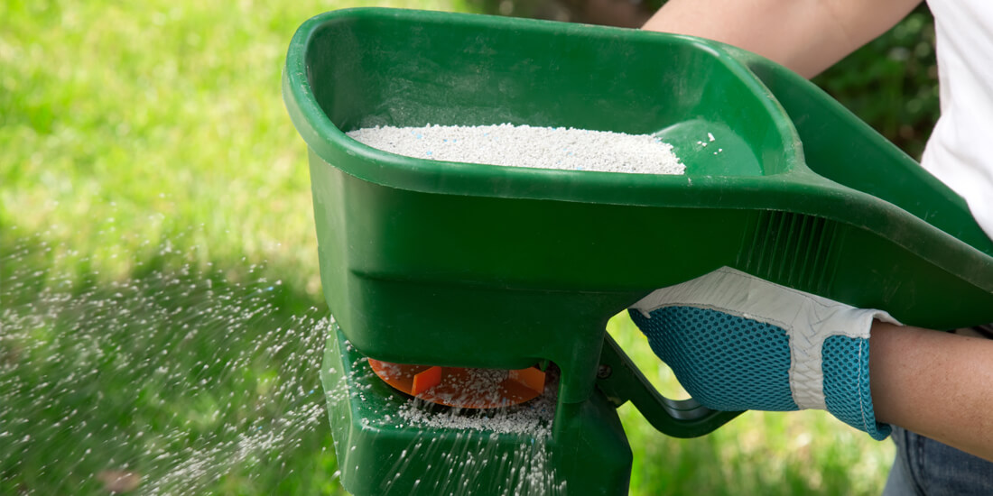 How to fertilise your lawn