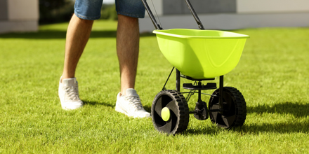 How to fertilise your garden in summer