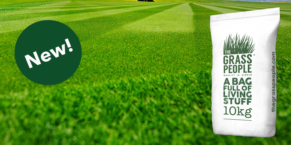 Become a SUPERSTAR at home with our newest grass seed!