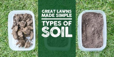 Great Lawns Made Simple: Types of soil