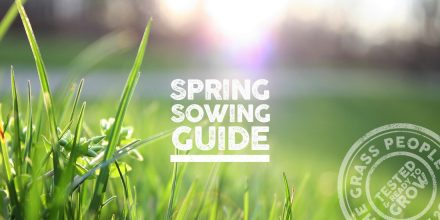 Spring sowing guide 2019: Prep, set and go!
