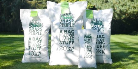 Types of grass seed: Getting the most out of your mixture