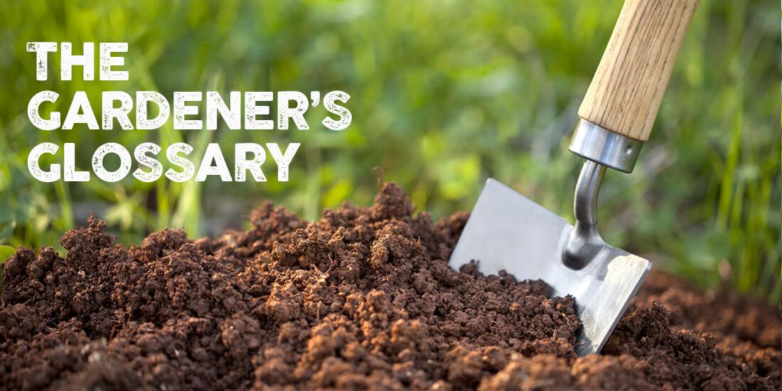 The Gardeners Glossary