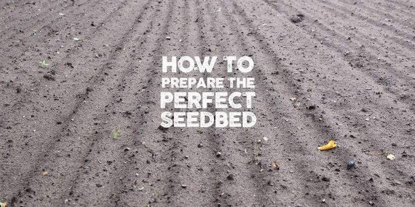 How to prepare the perfect seedbed