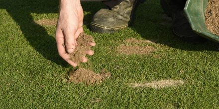 Dress to impress: Should I top dress my lawn?