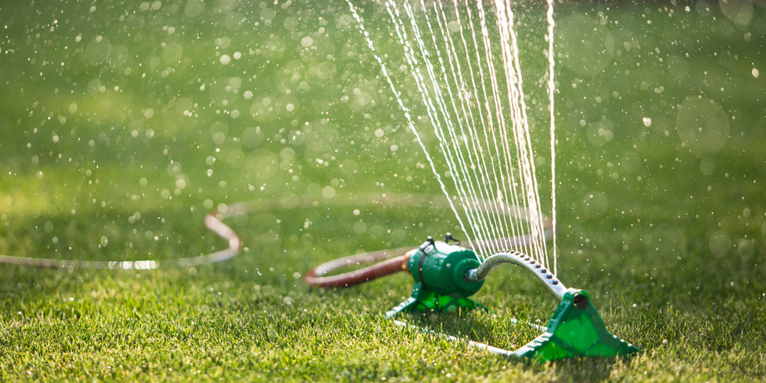 How Often Should I Water My Lawn