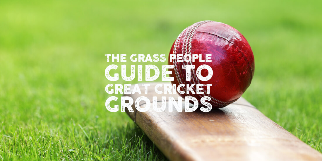 How to manage your cricket grounds